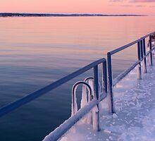 Ice Rail by darb85