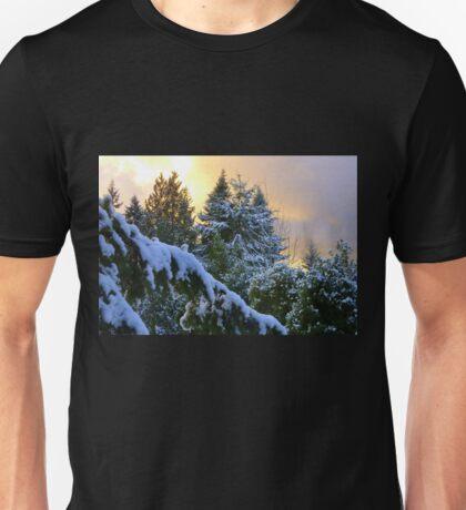 Frosty Alpenglow Unisex T-Shirt