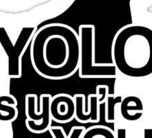 YOLNT Sticker