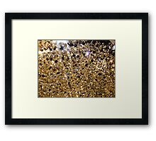 All that glitters ... Framed Print