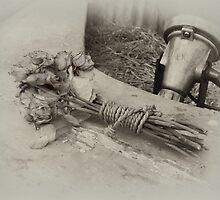 FADED ROSES  by scarletjames