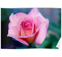 Pink Beauty Queen Poster