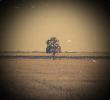 Far Away by Hayleyschreiber