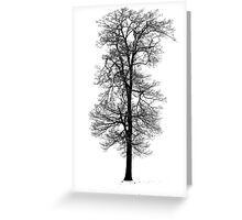 Snow Covered Tree - Hitchin Greeting Card