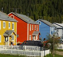 Yes, It's A Very Colourful Neighbourhood by David McMahon