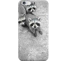 Which One Is The Cutest? iPhone Case/Skin