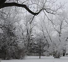 Snowy Retreat by Aekisra