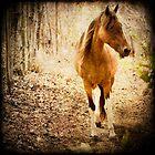 Horse by Carlos Restrepo
