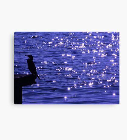 Stars on the water Canvas Print