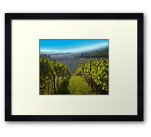 View of Hunter Valley vineyards, NSW, Australia Framed Print