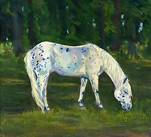 Spotted Pony by Dawn Melka