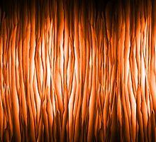 Paper flames by Atanas Bozhikov Nasko