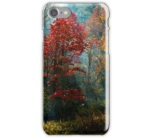 God's Paintbrush iPhone Case/Skin