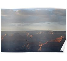 Flight  of the Condor - Grand Canyon Poster