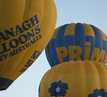Canberra Ballon Festival 2009 by fred-do