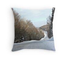 Ranger Lake Road Throw Pillow
