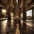 Concrete Jungle by Daniel Davison