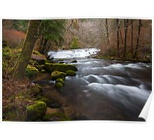 Sweet Creek, Oregon Poster