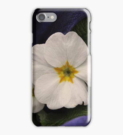 Primrose iPhone Case/Skin