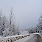 Country Road by Moninne Hardie