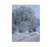 Weeping Willow at rest Art Print