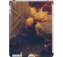 Hazelnuts iPad Case/Skin