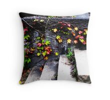 Fall Vines - Zurich, Switzerland Throw Pillow