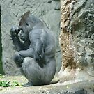 The Thinker by madmac57