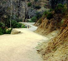 Road in Griffith park LA by loiteke