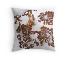 Seedheads in the Snow Throw Pillow