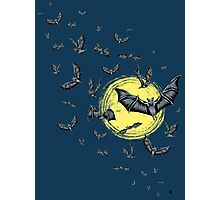 Bat Swarm  Photographic Print