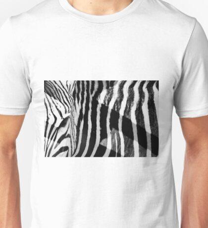 Eye of the beholder Unisex T-Shirt