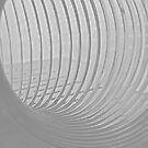 Slinky #2 by Elizabeth McPhee