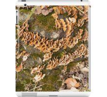 Bracket fungus iPad Case/Skin