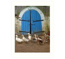 Romanian wine cellar - Ducks pass Art Print