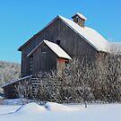 Back Road Barn by Deborah  Benoit