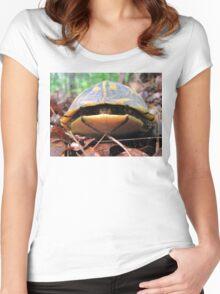 Turtle Sneaks a Peek Women's Fitted Scoop T-Shirt