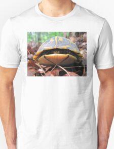 Turtle Sneaks a Peek T-Shirt