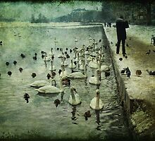 Swan Lake by © Kira Bodensted