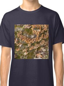 Bracket fungus Classic T-Shirt