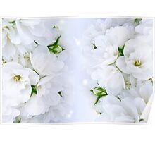 Romantic Jasmine Bouquet Poster