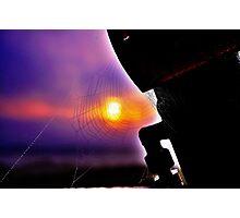 'Web' Photographic Print