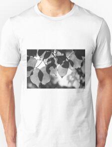 Backlit Leaves Black & White Graphic T-Shirt