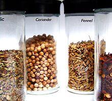 Spices by Jill Bernier