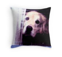 Lonely cute dog photography Throw Pillow