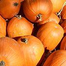 Lotta Pumpkins by WildestArt
