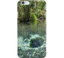 Seven Sisters Florida freshwater springs iPhone Case/Skin