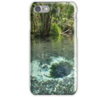 Seven Sisters Florida freshwater springs iPhone Case/Skin