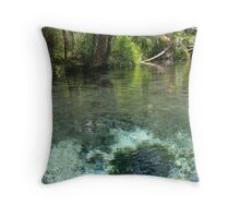Seven Sisters Florida freshwater springs Throw Pillow