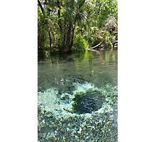 Seven Sisters Florida freshwater springs Photographic Print